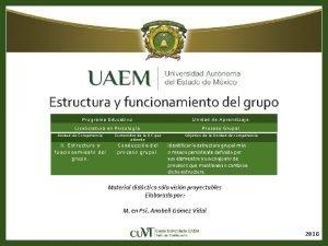 Estructura y funcionamiento del grupo Programa Educativo Unidad