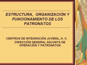 ESTRUCTURA ORGANIZACIN Y FUNCIONAMIENTO DE LOS PATRONATOS CENTROS