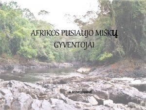 AFRIKOS PUSIAUJO MIK GYVENTOJAI A REMEIKIEN PUSIAUJO MIK