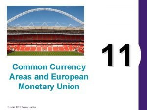 Common Currency Areas and European Monetary Union Copyright