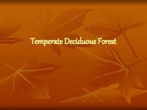 Temperate Deciduous Forest Temperate Deciduous Forest Location We