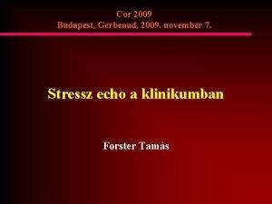 Cor 2009 Budapest Gerbeaud 2009 november 7 Stressz