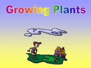 The mother plant sends the baby seed away