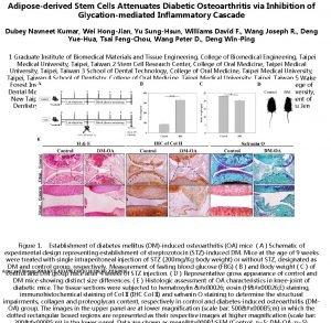 Adiposederived Stem Cells Attenuates Diabetic Osteoarthritis via Inhibition
