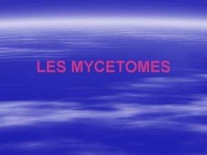 LES MYCETOMES Dfinition Les myctomes sont des pseudotumeurs