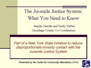 The Juvenile Justice System What You Need to
