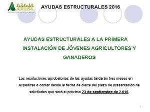 AYUDAS ESTRUCTURALES 2016 AYUDAS ESTRUCTURALES A LA PRIMERA