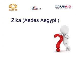 Zika Aedes Aegypti Zika Enfermedad causada por un