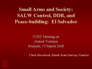 Small Arms and Society SALW Control DDR and
