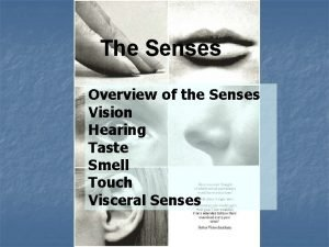 The Senses Overview of the Senses Vision Hearing