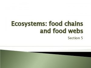 Ecosystems food chains and food webs Section 5