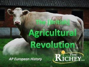 The British Agricultural Revolution AP European History Innovation