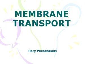 MEMBRANE TRANSPORT Hery Purnobasuki MEMBRAN PLASMA Merupakan transport
