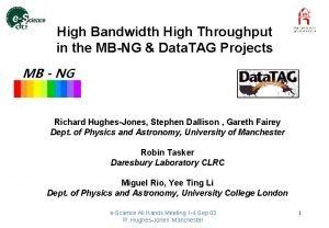 High Bandwidth High Throughput in the MBNG Data