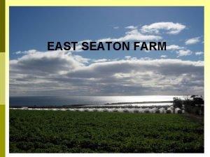 EAST SEATON FARM East Seaton Farm East Seaton