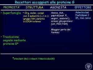 Recettori accoppiati alle proteine G PROPRIETA STRUTTURA Superfamiglia