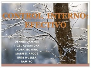 CONTROL INTERNO EFECTIVO DENNIS CAMPOS ITZEL ALEJANDRA LAURA