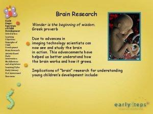 Brain Research Early Steps Spectrum of Child Development