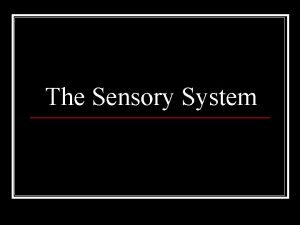 The Sensory System n Examining the sensory system