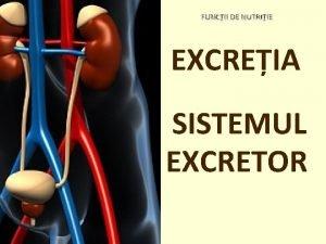 FUNCII DE NUTRIIE EXCREIA SISTEMUL EXCRETOR SISTEMUL EXCRETOR