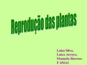 Luisa Silva Luiza Arroyo Manuela Barroso F4 MA