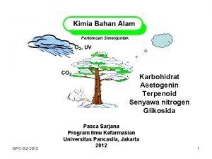 Partomuan Simanjuntak Karbohidrat Asetogenin Terpenoid Senyawa nitrogen Glikosida