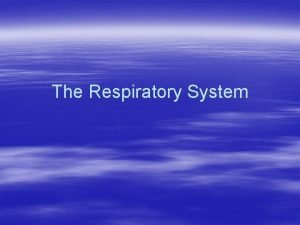 The Respiratory System What is the Respiratory System
