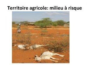 Territoire agricole milieu risque Les territoires agricoles risque