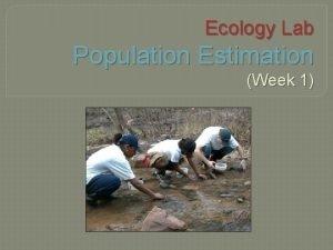 Ecology Lab Population Estimation Week 1 Population Estimation