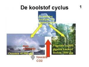 De koolstof cyclus De atmosfeer bevat plm 750