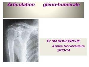 Articulation glnohumrale Pr SM BOUKERCHE Anne Universitaire 2013