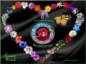Transition manuelle Jaime les fleurs lorsque sauvages Elles
