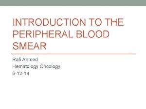 INTRODUCTION TO THE PERIPHERAL BLOOD SMEAR Rafi Ahmed