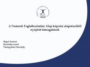A Nemzeti Foglalkoztatsi Alap kpzsi alaprszbl nyjtott tmogatsok