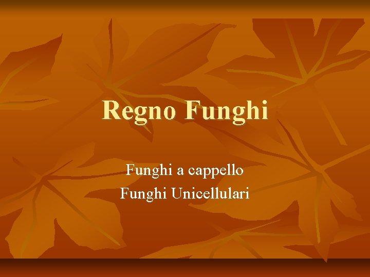 Regno Funghi a cappello Funghi Unicellulari Il Regno