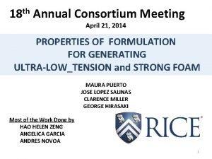 18 th Annual Consortium Meeting April 21 2014
