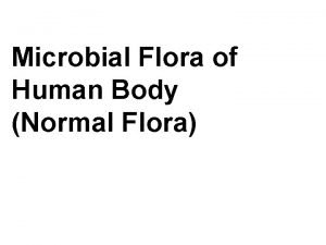 Microbial Flora of Human Body Normal Flora NORMAL