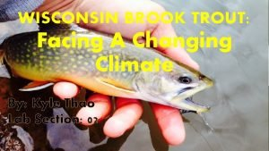 WISCONSIN BROOK TROUT Facing A Changing Climate By