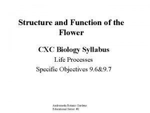 Structure and Function of the Flower CXC Biology