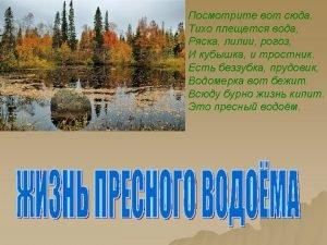 http fotki yandex ruusersgeostepanovview36245 http fotki yandex ruusersm