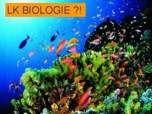 LK BIOLOGIE Kurzbersicht Inhalte Einfhrungsphase Die Zelle molekulare
