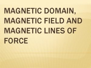 MAGNETIC DOMAIN MAGNETIC FIELD AND MAGNETIC LINES OF