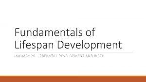 Fundamentals of Lifespan Development JANUARY 20 PRENATAL DEVELOPMENT