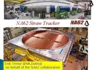 NA 62 Straw Tracker Enik Temur JINR Dubna