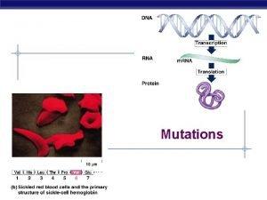 Mutations AP Biology Mutations n Point mutations single