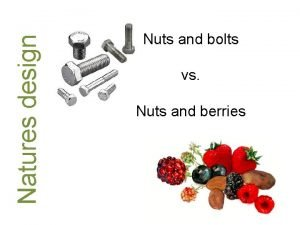 Natures design Nuts and bolts vs Nuts and
