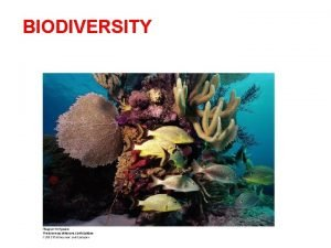 BIODIVERSITY Biodiversity is the number and relative abundance