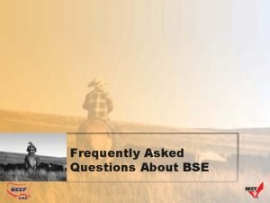 Frequently Asked Questions About BSE General Questions Has