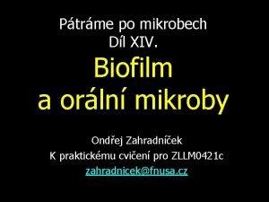 Ptrme po mikrobech Dl XIV Biofilm a orln