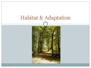 Habitat Adaptation Habitat The environment in which a